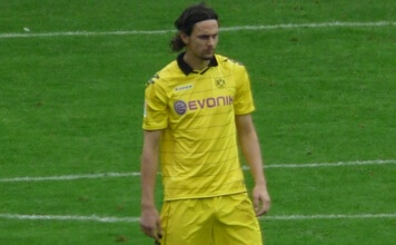 Neven Subotić