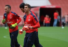 Petr Cech, David Ospina and Emiliano Martinez